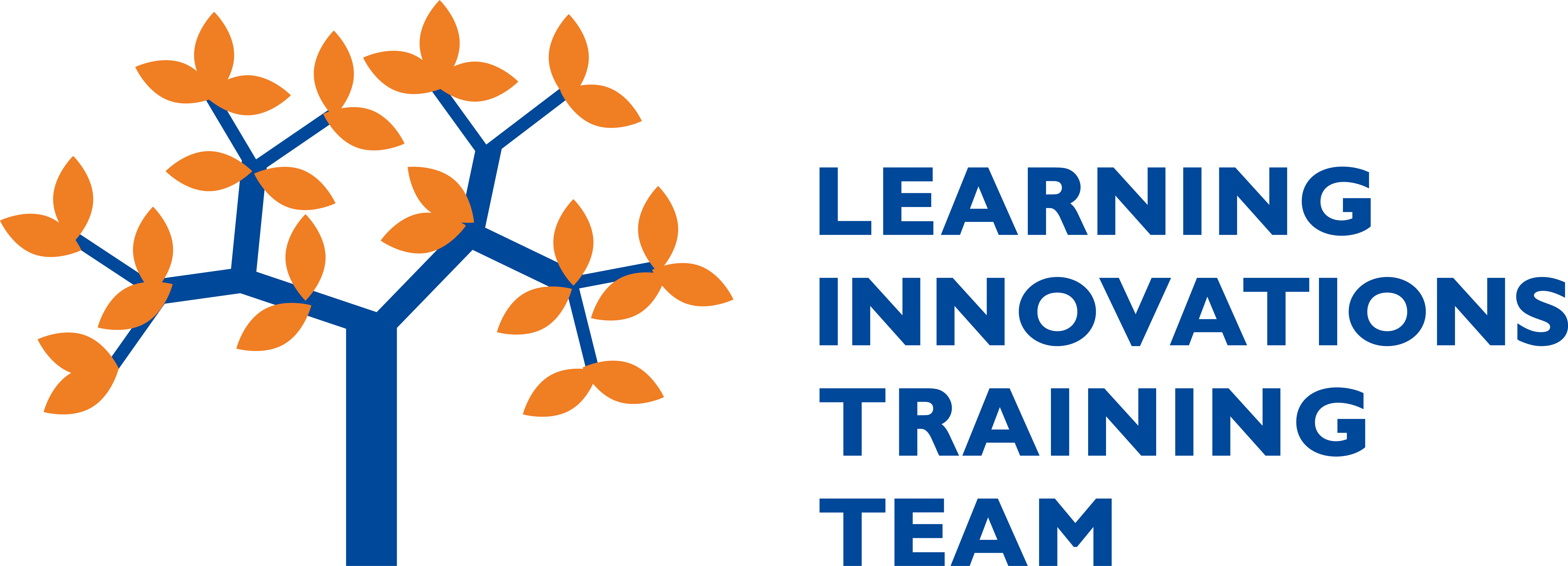 Learning Innovations Training Team